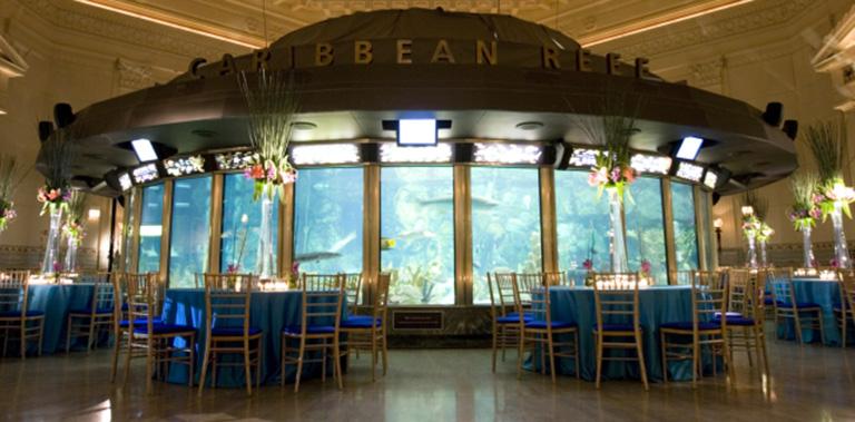 Awards Dinner at the Chicago Aquarium | Chicago Corporate Event Planning