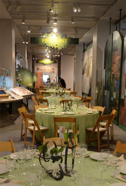 Association Dinner at the NC Museum of Science | Raleigh Event Planner